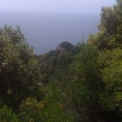 Chemin des cretes-AJACCIO-101