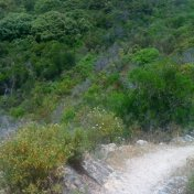 Chemin des cretes-AJACCIO-106