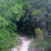 Chemin des cretes-AJACCIO-109
