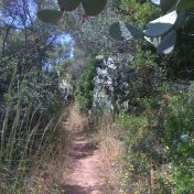 Chemin des cretes-AJACCIO-11