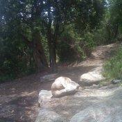 Chemin des cretes-AJACCIO-115