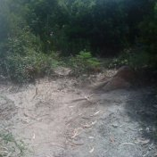 Chemin des cretes-AJACCIO-118