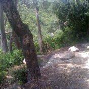 Chemin des cretes-AJACCIO-119