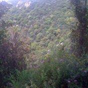 Chemin des cretes-AJACCIO-122