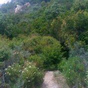 Chemin des cretes-AJACCIO-134