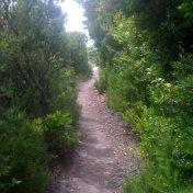 Chemin des cretes-AJACCIO-136
