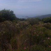 Chemin des cretes-AJACCIO-147