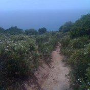 Chemin des cretes-AJACCIO-150