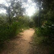 Chemin des cretes-AJACCIO- 160