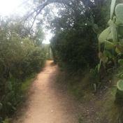 Chemin des cretes-AJACCIO- 172