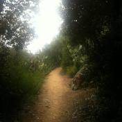 Chemin des cretes-AJACCIO- 181