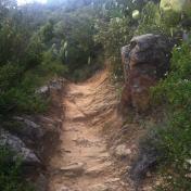 Chemin des cretes-AJACCIO- 196