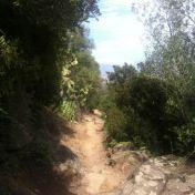 Chemin des cretes-AJACCIO- 205