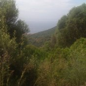 Chemin des cretes-AJACCIO-28