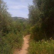 Chemin des cretes-AJACCIO-30