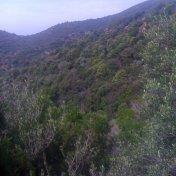 Chemin des cretes-AJACCIO-32