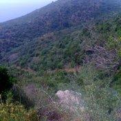 Chemin des cretes-AJACCIO-33
