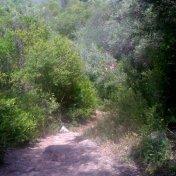 Chemin des cretes-AJACCIO-35