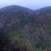 Chemin des cretes-AJACCIO-37