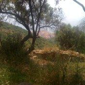 Chemin des cretes-AJACCIO-44