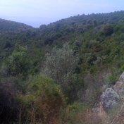 Chemin des cretes-AJACCIO-48
