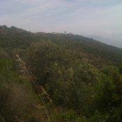 Chemin des cretes-AJACCIO-54