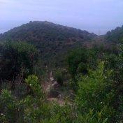 Chemin des cretes-AJACCIO-55