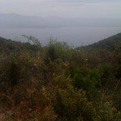 Chemin des cretes-AJACCIO-56