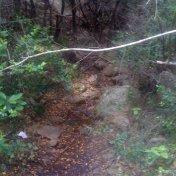 Chemin des cretes-AJACCIO-59