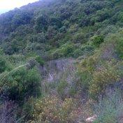 Chemin des cretes-AJACCIO-68