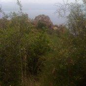 Chemin des cretes-AJACCIO-72