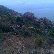 Chemin des cretes-AJACCIO-73