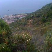 Chemin des cretes-AJACCIO-78