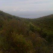 Chemin des cretes-AJACCIO-85