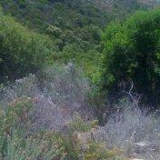 Chemin des cretes-AJACCIO-88