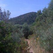 Chemin des cretes-AJACCIO-9