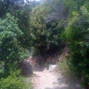 Chemin des cretes-AJACCIO-90