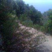 Chemin des cretes-AJACCIO-93