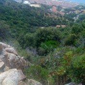 Chemin des cretes-AJACCIO-99