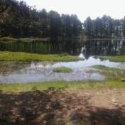 Lac de Creno- Corse-10