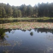 Le lac de Creno
