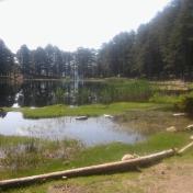 Lac de Creno- Corse-24
