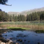 Lac de Creno- Corse-28