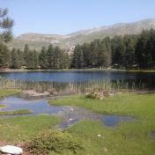 Lac de Creno- Corse-29