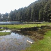Lac de Creno- Corse-31