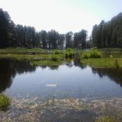 Lac de Creno- Corse-35