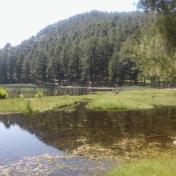 Lac de Creno- Corse-38