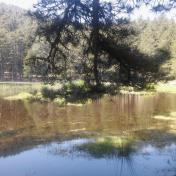 Lac de Creno- Corse-39